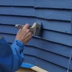 paintbrush-resized-600-501659-edited