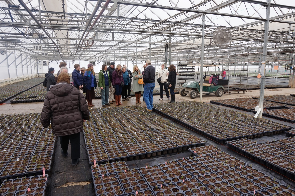 Master Gardeners get tour of Bailey's 22 acres of greenhouses