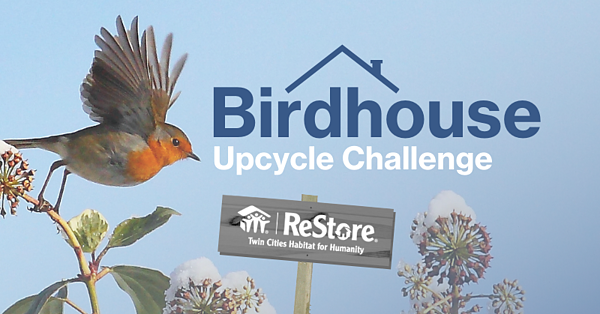birdhouse upcycle challenge
