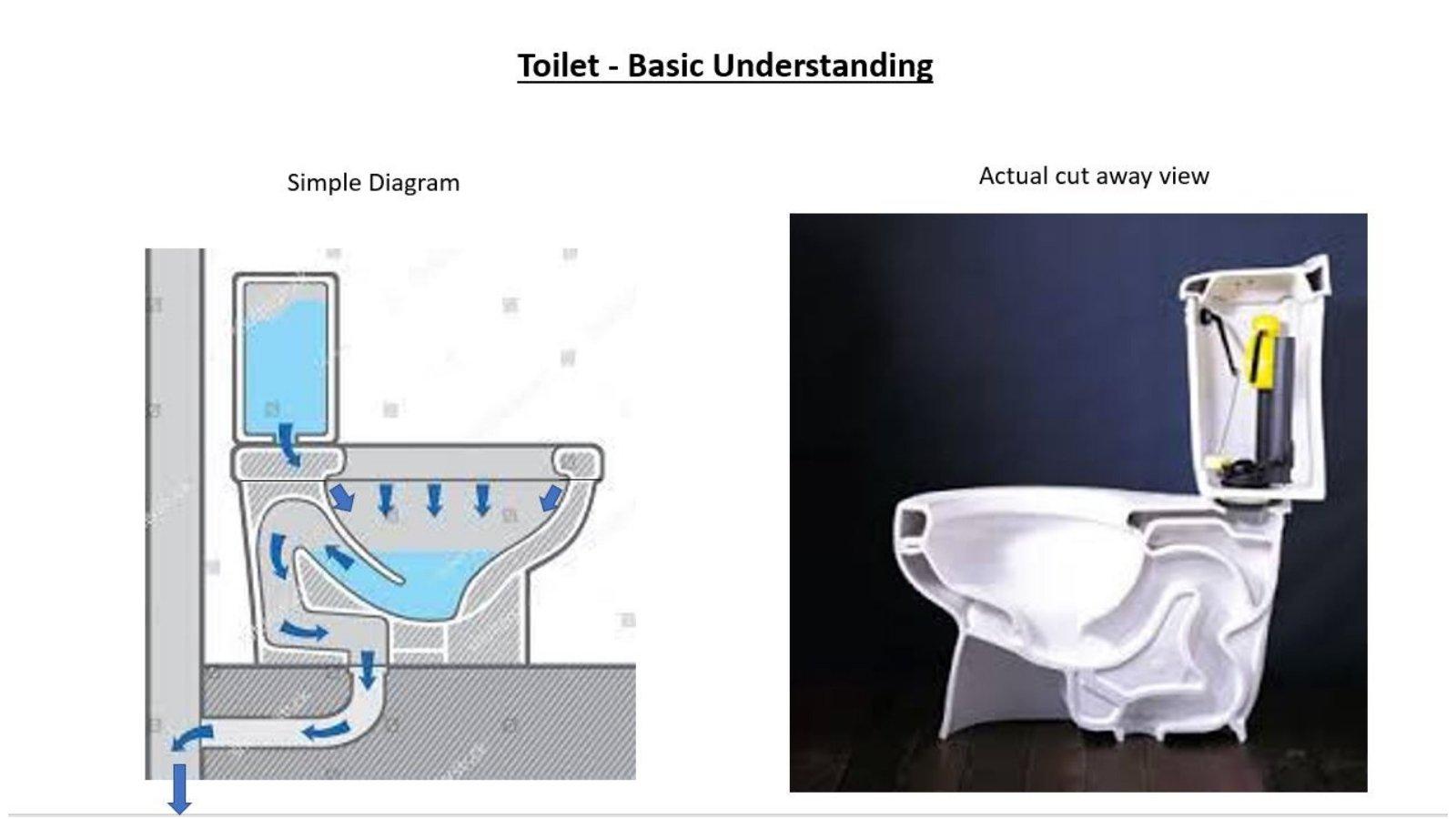 Toilet Basics