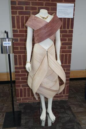 Art Institutes International Minnesota Student's Gala Design