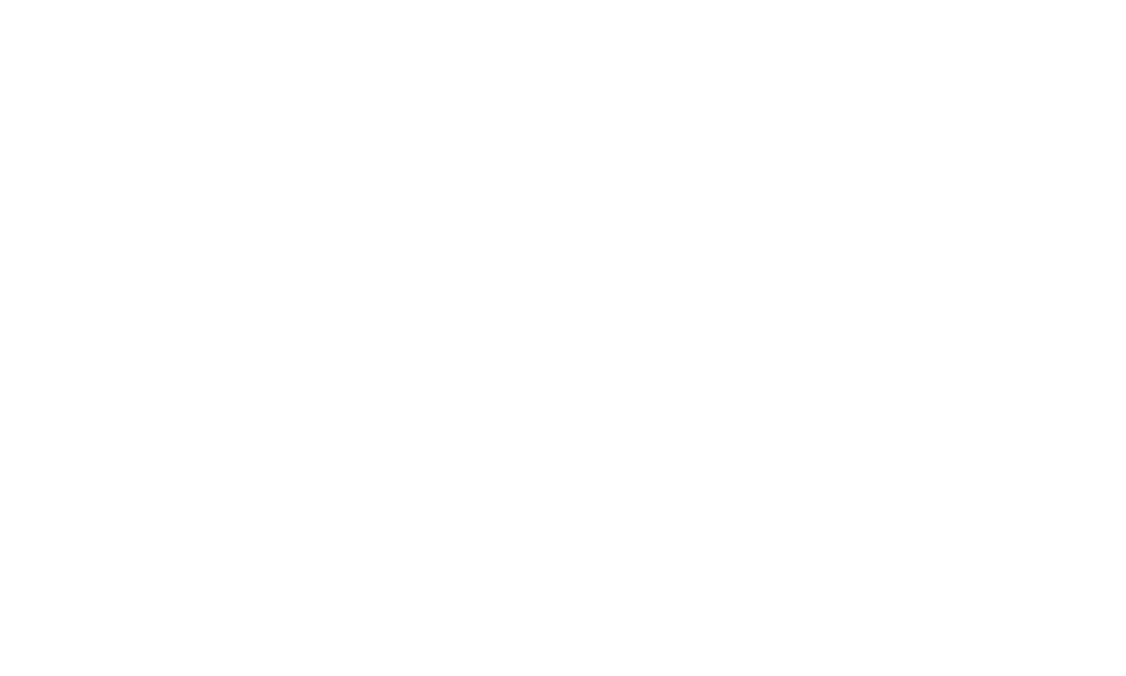 Multiplying the Impact campaign logo - Strength in Numbers