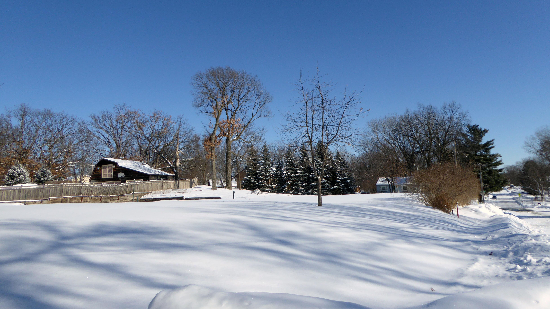 Yard property  in winter/spring 2018