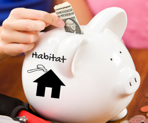 Fundraise for Twin Cities Habitat